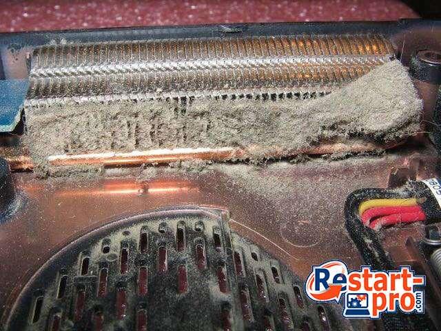 Пыль и грязь внутри ноутбука